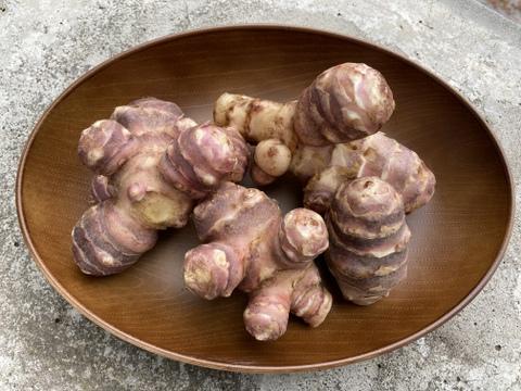 【農薬・化学肥料不使用】自然農法で育った紫菊芋 5kg