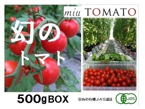 晩旬【お試し500g】名古屋の《極甘》有機栽培ミニトマト【飯田農園】miuトマト