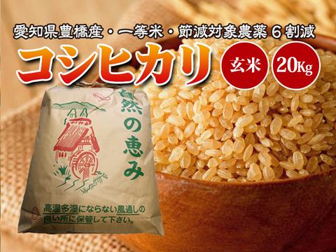 【節減対象農薬6割減・一等米】コシヒカリ 玄米20g(10kg×2袋)【令和2年・愛知県産】