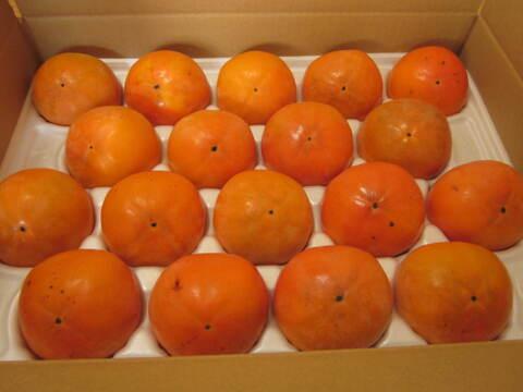 【数量限定】秋の味覚 富有柿4㎏(16~20玉)