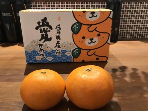 『御予約』高級品種【せとか】糖度が高くトロリとした食感は柑橘の大トロ!ご家庭用(3kg)