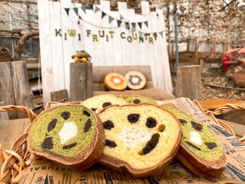 贈り物に是非!キウイおばさんの作るゆったりな休日セット♪キウイパンケーキ&キウイジャムとグリーンキウイセット