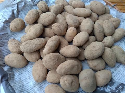 有機ジャガイモ メークイン(4kg)
