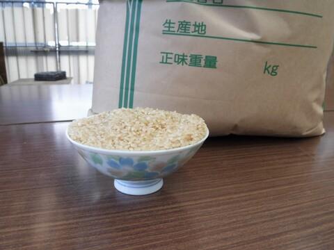 令和2年産 減農薬 コシヒカリ 玄米 2㎏