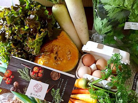 【季節のお野菜】さいのね畑の野菜セット[大]+たまごセット