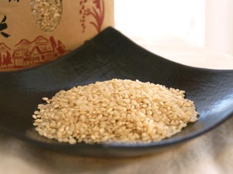 特別栽培米コシヒカリ玄米3㎏