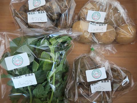 【肥料・農薬不使用栽培】カラダの中から笑顔になる季節の野菜セット(3品)