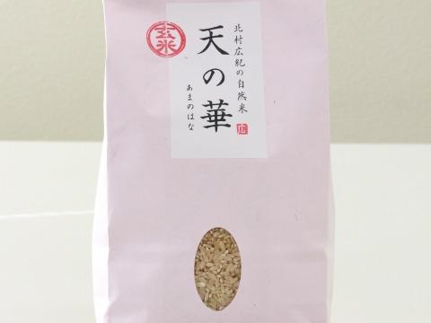 🌸🌸奇跡!生きてる「天の華」玄米1kg×3袋