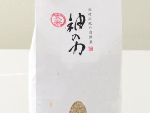 奇跡!ふっくら甘い九州産「神の力」玄米1kg