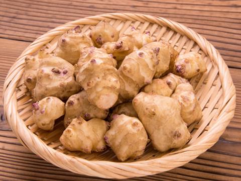 【肥料・農薬不使用栽培】ほっこりな菊芋(1kg)