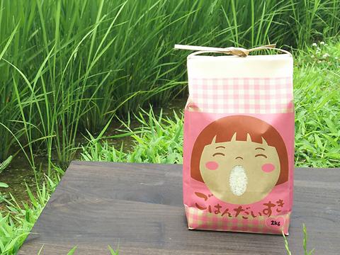 菜園家族の医農米「コシヒカリ」@旅するお米の宅配便【白米】10kg
