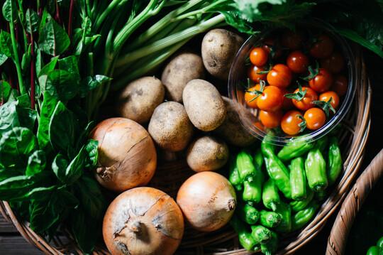 野菜ボックス【8〜10品】